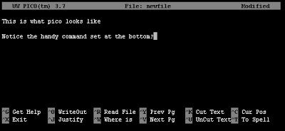 Pico editor